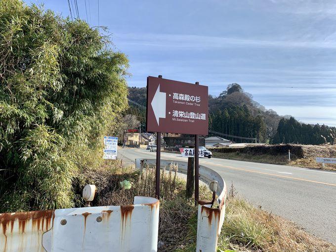 アクセスは車で!高森殿の杉への行き方