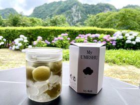 奥日田温泉で梅づくし!「梅酒蔵おおやま」で梅酒作り体験
