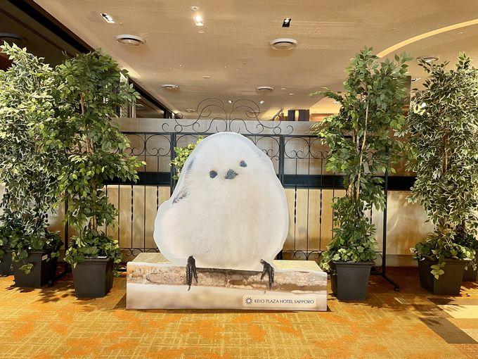 京王プラザホテル札幌に雪の妖精「シマエナガ」が現れた?!