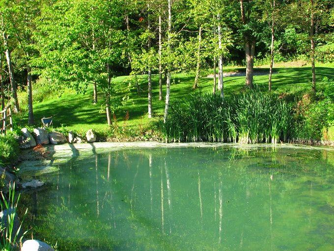豊平峡温泉でキャンプができる!?