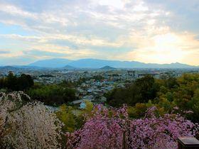 誰かに見せたい万葉の山と桜の絶景!奈良「大美和の杜展望台」