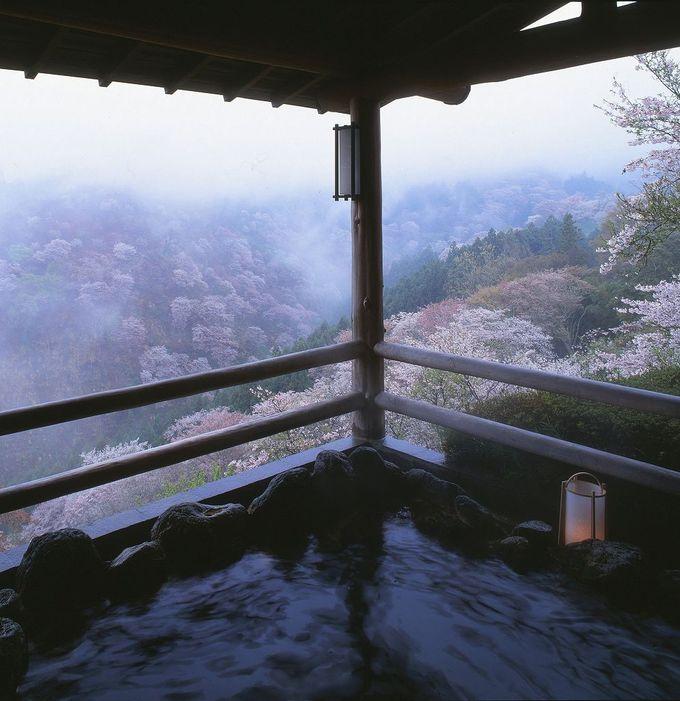 吉野山の桜と湯元 宝の家の絶景露天風呂