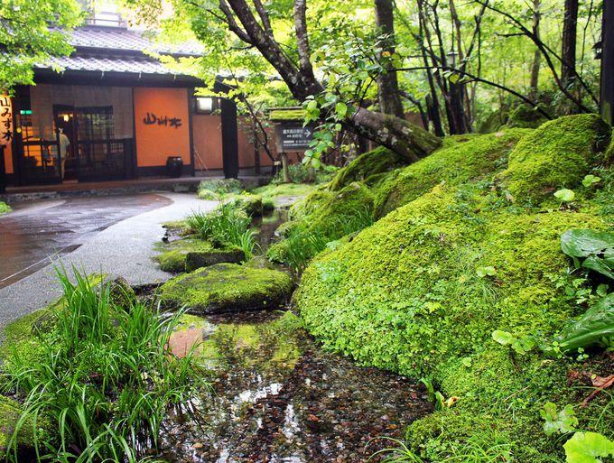 山の中の鄙びた温泉が一躍大人気温泉に!
