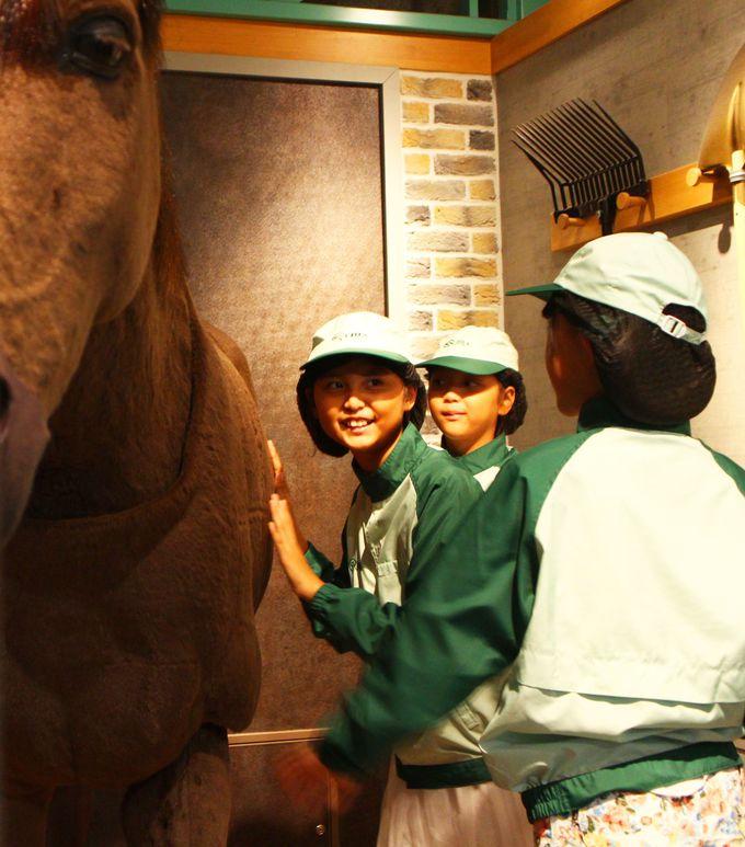 ホースパークで馬の世話を学ぶ!