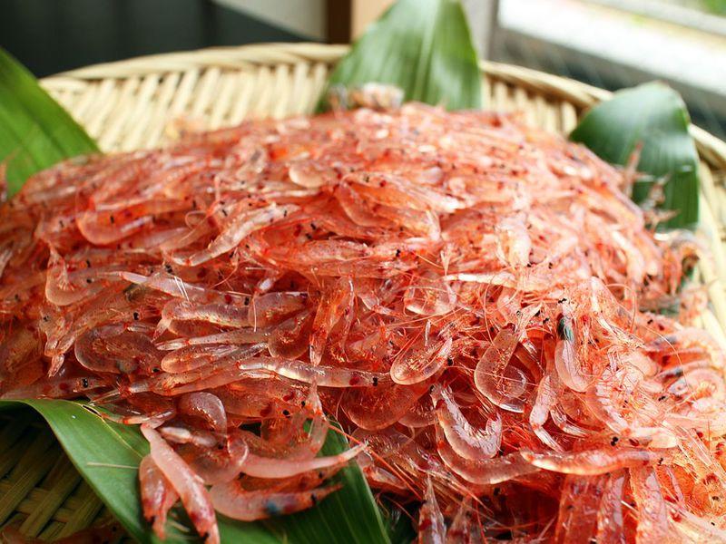 トロ〜リ甘い話題の由比桜えびは静岡「開花亭・割烹旅館西山」に食べに行く!