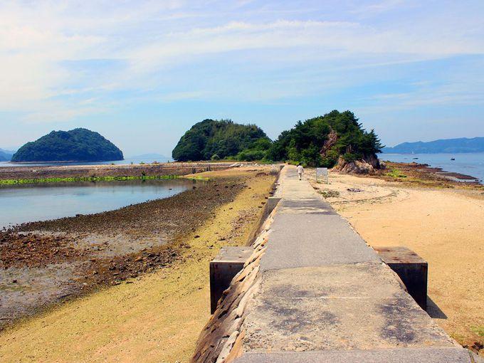 潮の満ち引きをチェック!パワースポット真宮島へ渡ってみよう