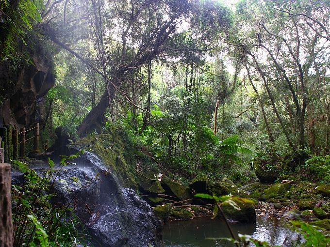 絶景展望台から滝の裏を歩くネイチャースポットまで