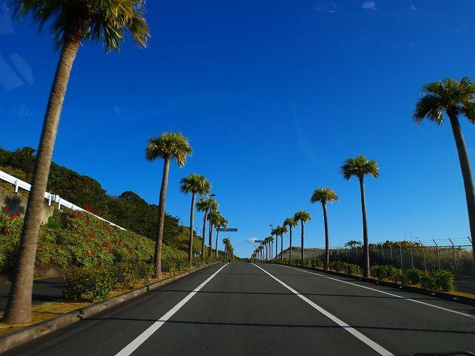 ドライブ最初の目的は八丈島のきょん!