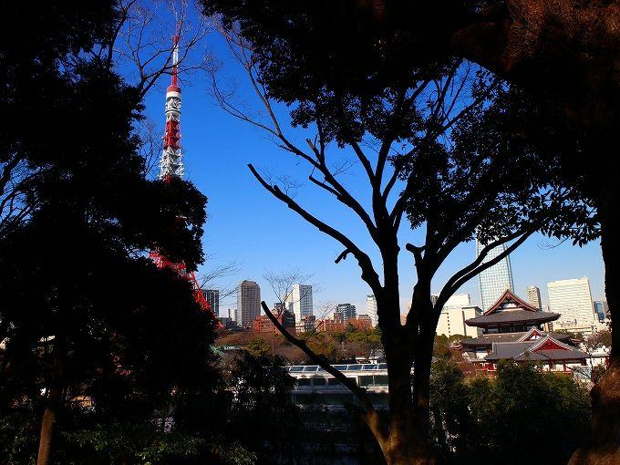 東京タワーの隣に古墳があるって知ってた?「芝丸山古墳」