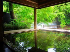 群馬「かやぶきの郷 薬師温泉旅籠」の美しすぎる滝見露天風呂!
