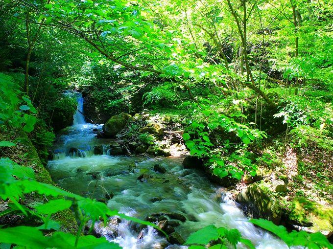 炭酸泉が自噴する角間渓谷の渓流