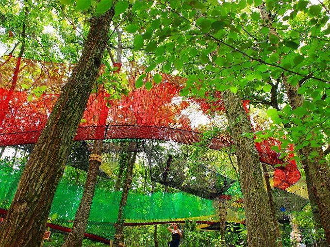 「おんり〜ゆ〜」を拠点に足柄森林公園へ遊びに行こう!