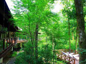 神奈川の隠れ家温泉ならココ!足柄の森に佇む「おんり〜ゆ〜」