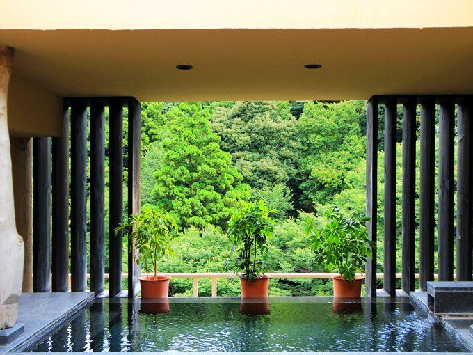 箱根温泉一人泊におすすめ!「箱根水明荘別館ポサーダ」はお風呂が豪華