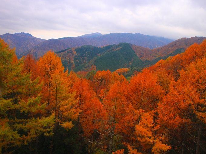 帰路は阿智村の豊かな自然を楽しんで
