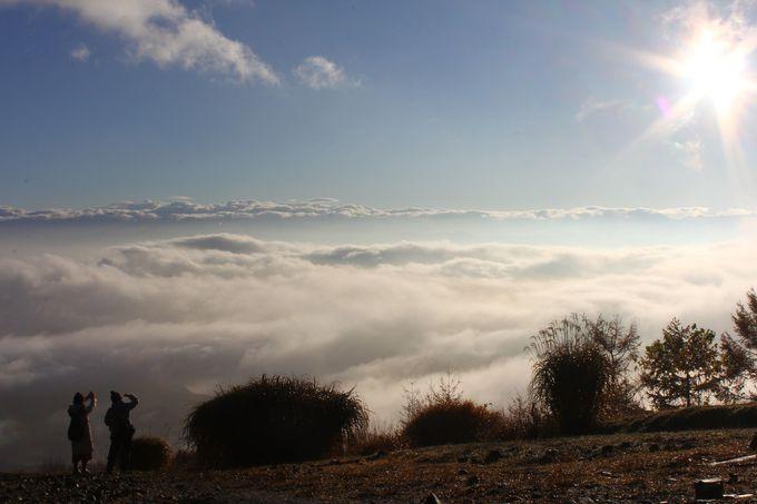 2.天空の楽園 雲海ハーバー