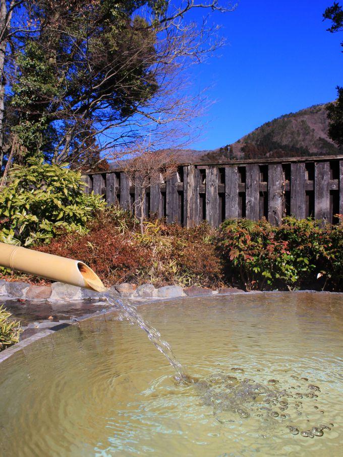 「箱根てのゆ」の露天風呂は源泉掛け流しの絶景風呂