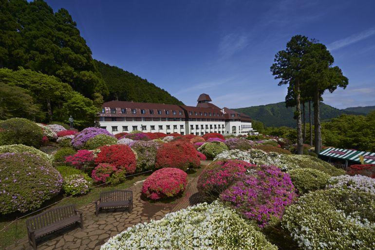 ツツジで知られる「山のホテル」とは