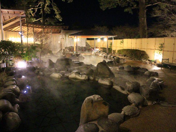 午後のプラン2:箱根小涌園ユネッサン