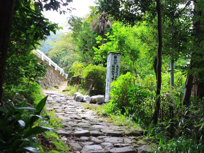 箱根旧街道の石畳を歩いて行く箱根観音