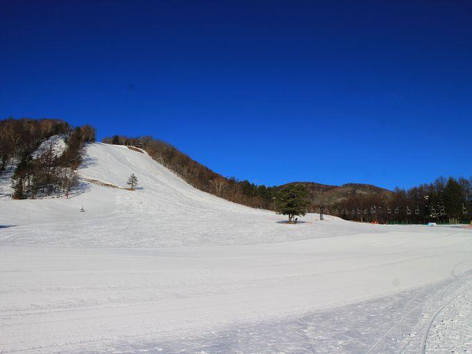 2019シーズンの草津温泉スキー場、オススメポイントはこれ