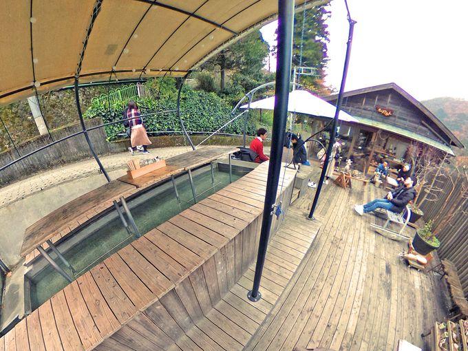 宮ノ下駅の坂を下りてすぐ「ナラヤカフェ」