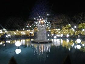 箱根強羅公園スプリングナイトガーデン2020の楽しみ方!