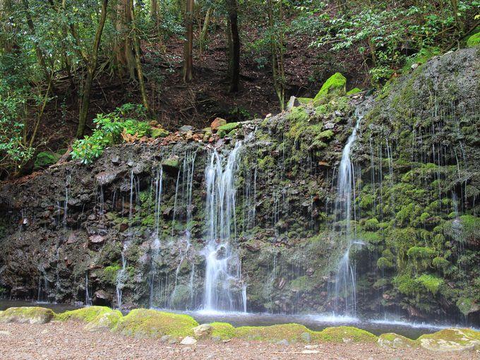 小涌谷の名所、蓬莱園と千条の滝も近くに