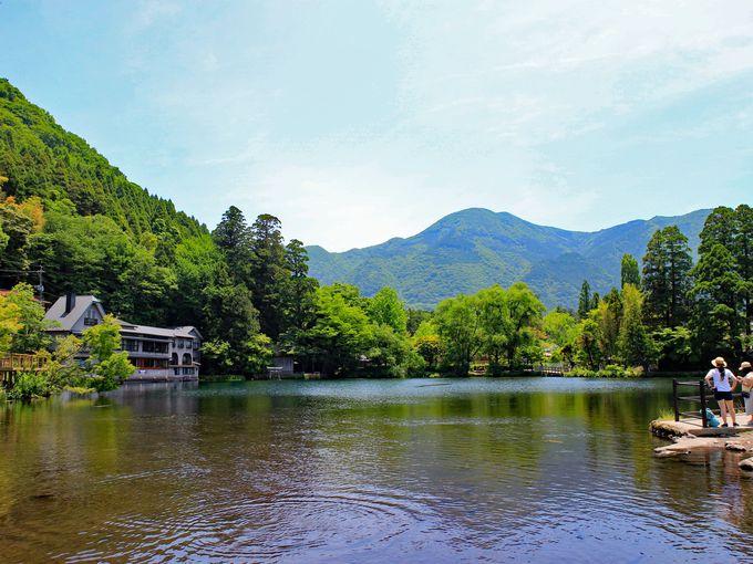 午前10時:金鱗湖までお散歩、「天井棧敷」でお茶タイム