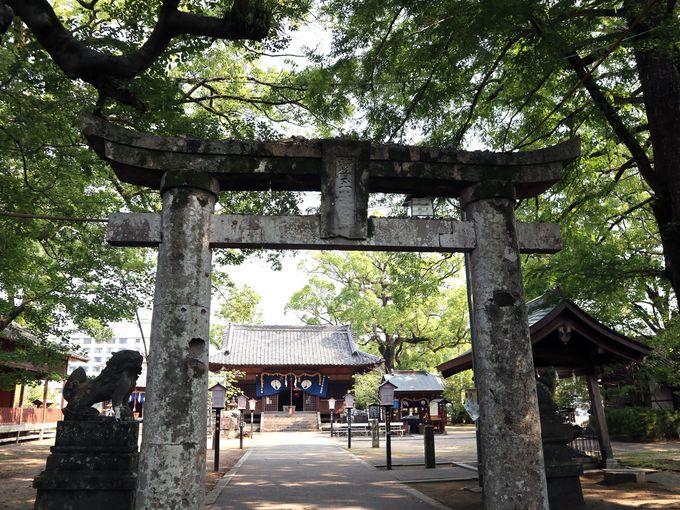 朝:嬉野温泉の日帰り観光なら、まずは「豊玉姫神社」へ