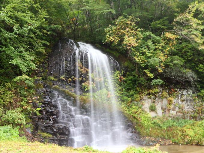 中滝森林セラピーロードで滝巡り
