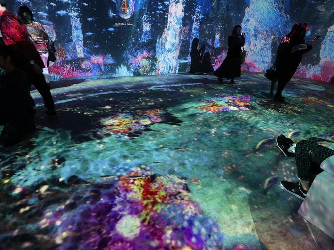 めくるめくOCEAN BY NAKED 光の深海展の世界