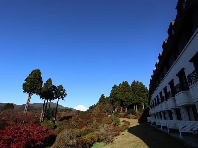 「小田急 山のホテル」オリジナル御朱印帳を受け取ろう!