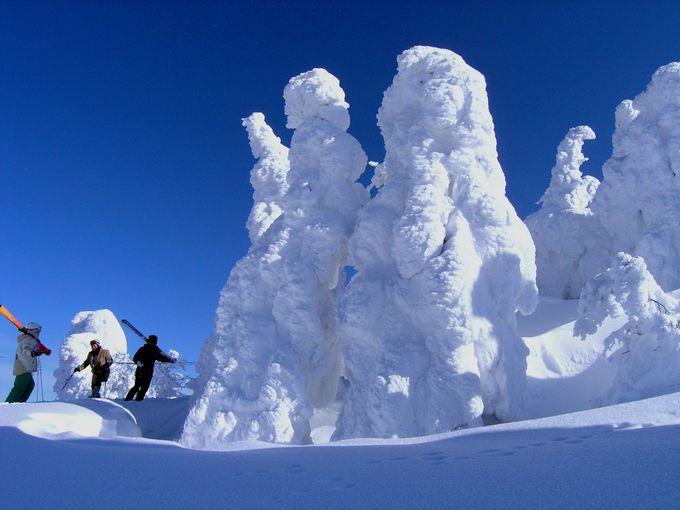 冬の大館能代空港から行く!森吉山の樹氷とオススメ温泉ガイド