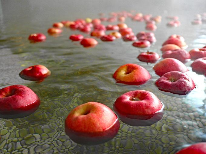 「りんご風呂」でりんごと戯れる「ホテルアップルランド」