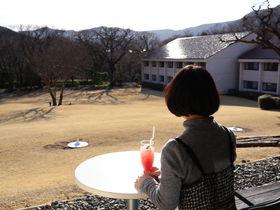 「小田急 箱根ハイランドホテル」でスローな一人旅を楽しむには