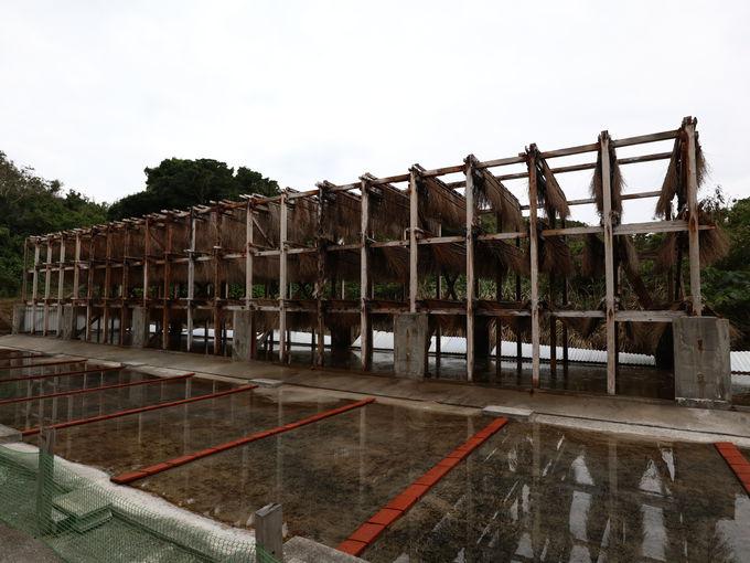浜比嘉島の塩工房(高江洲製塩所)と宮城島のぬちまーす