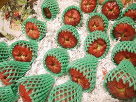 フルーツ天国台湾!台北・迪化街「豊味果品」で味わう自然の恵み