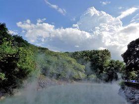 足湯VS手湯!台北・北投へ温泉列車に乗ってプチ癒やし旅