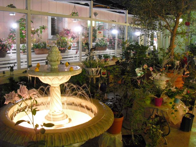 ライトアップされた夜の温室は幻想的な雰囲気とバラの香りが漂う