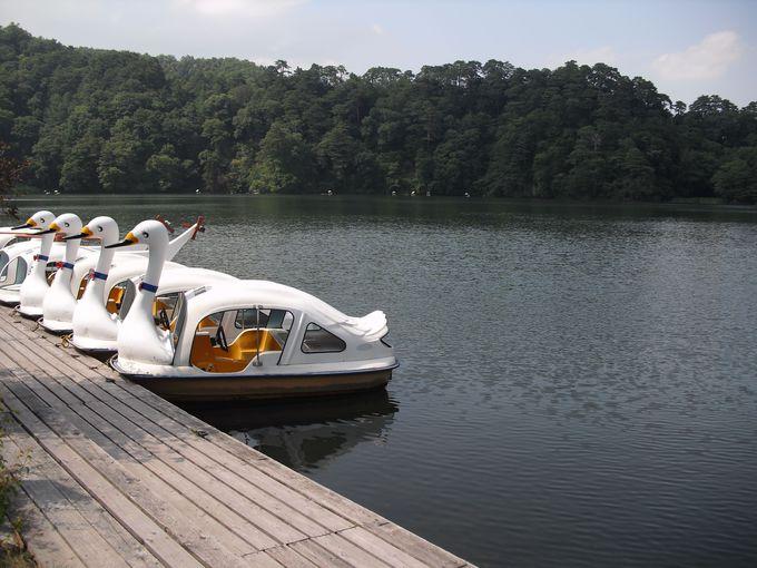 釣りや紅葉写真の撮影場所としても人気の「松原湖」