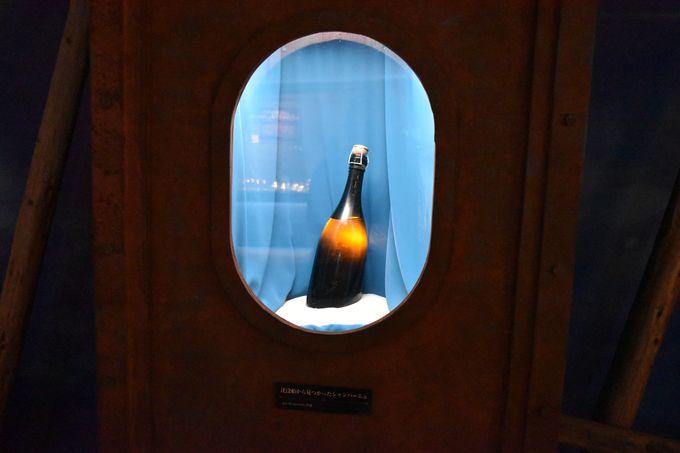 バルト海の地底から発見!!世界最古級の「シャンパーニュ」も展示