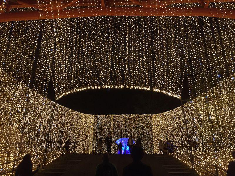 神奈川・イルミ&温泉!冬遊びなら「さがみ湖リゾート」にお任せ!