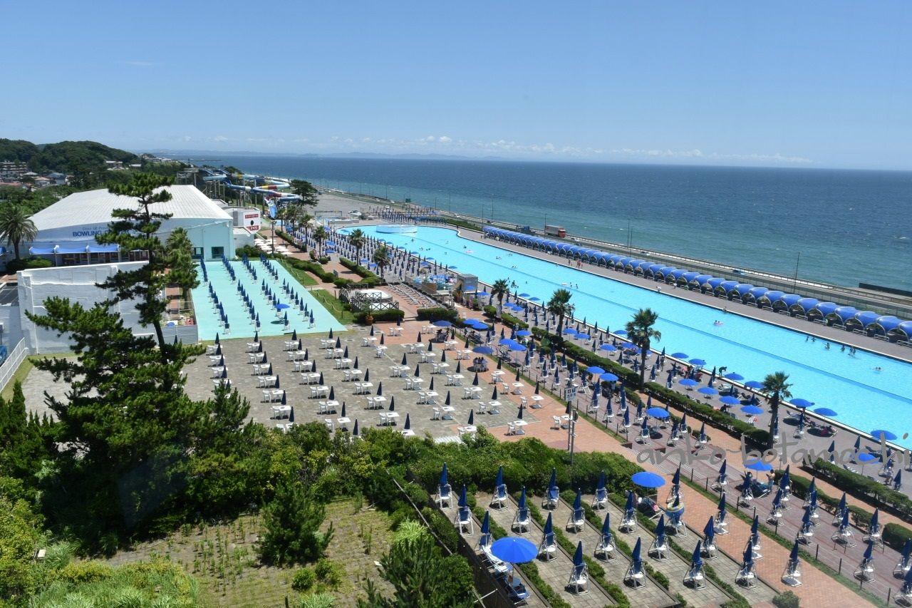 ホテルからは湘南の海と美しいビジュアルのプールが眺められる