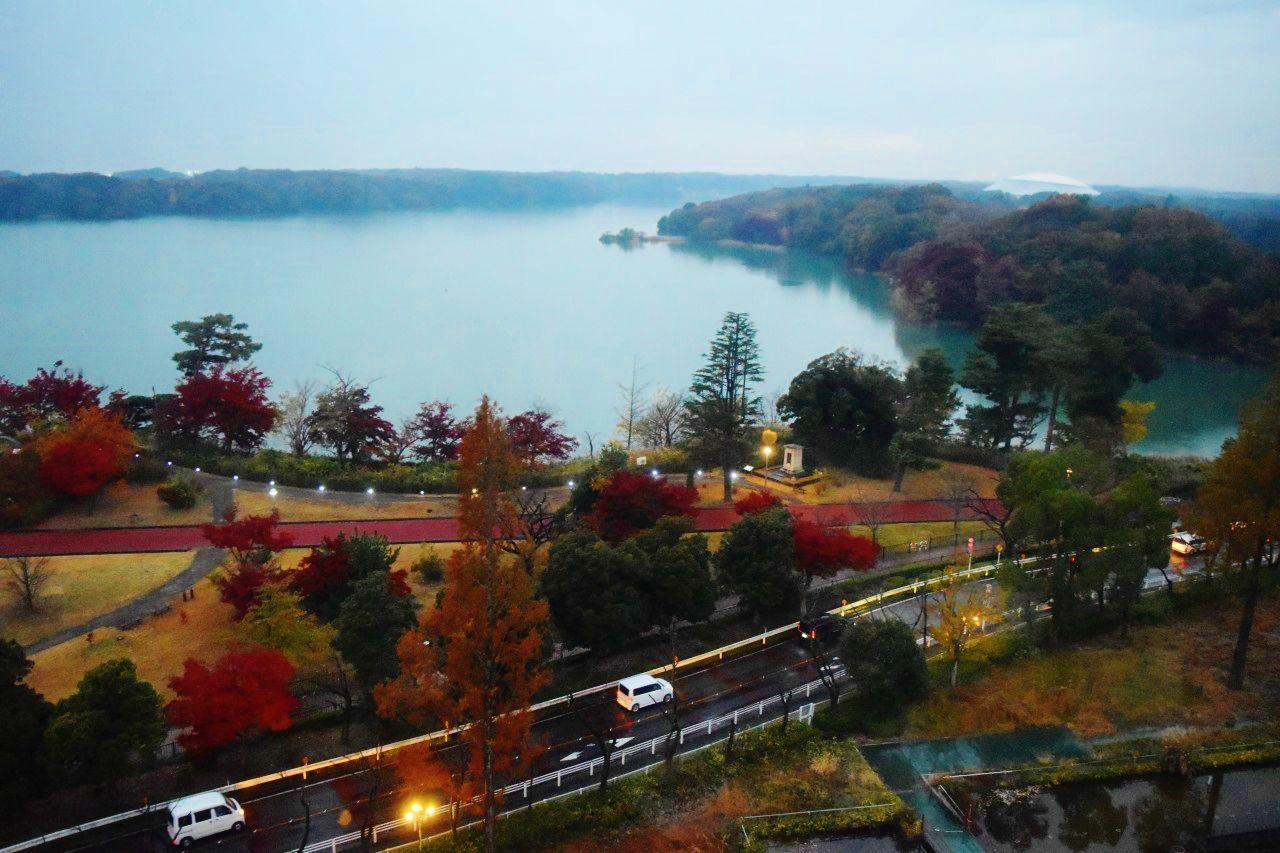 ホテルすぐ横の「西武園ゆうえんち」に絶景スポットあり