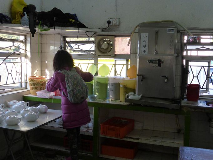 まずはお茶を飲んで川龍村の水の美味しさを味わって