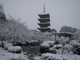 京都駅から徒歩圏内!雪景色も素晴らしい冬の東寺とその周辺の楽しみ方