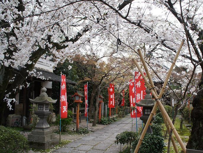 境内は桜でいっぱいに!長建寺