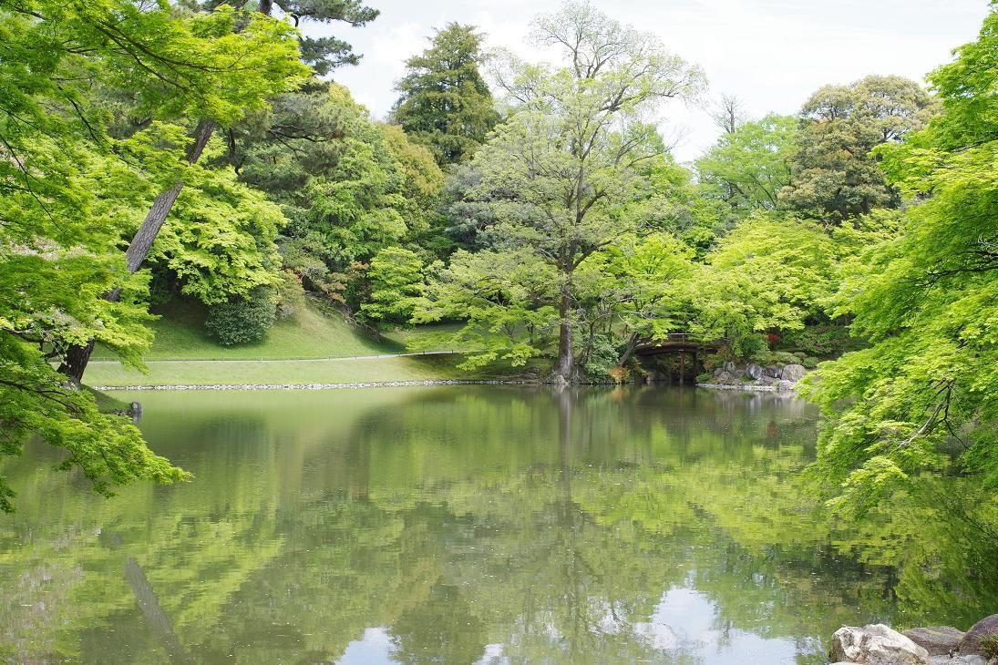 ゆっくり新緑を眺められる仙洞御所