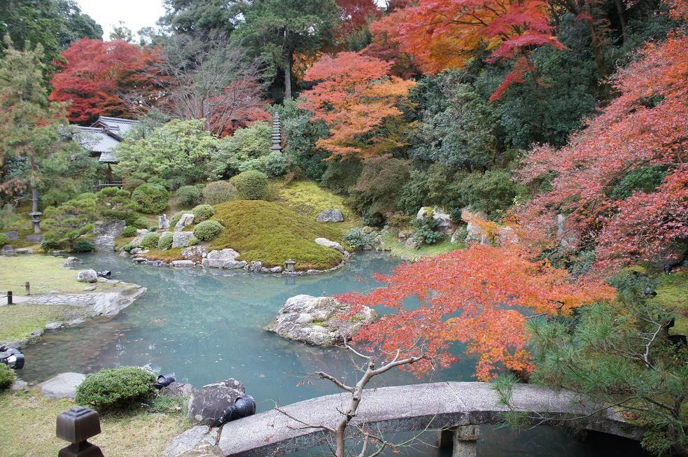 美しい紅葉を独り占めできるかも?青蓮院門跡
